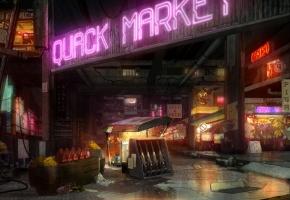 AML_302_BG_IntQuackMarketAngle1_CO_v01small