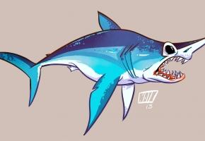 shark sketch